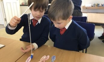 Year 1 Science: go fish magnetic game